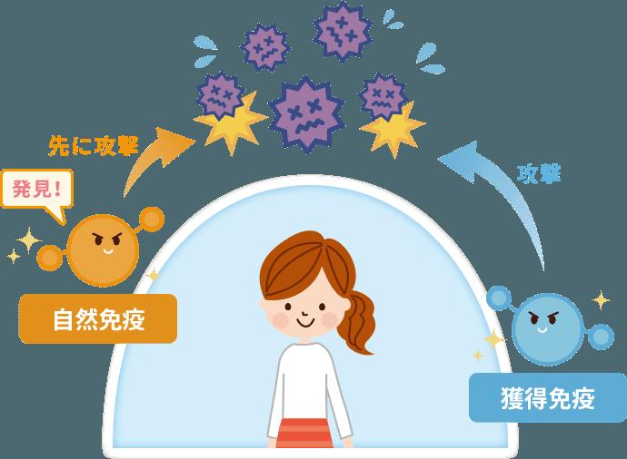 乳児 免疫 機能